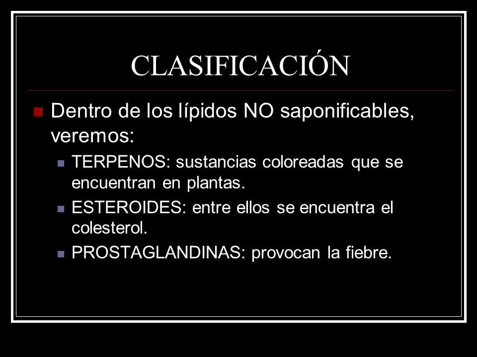 CLASIFICACIÓN Dentro de los lípidos NO saponificables, veremos: