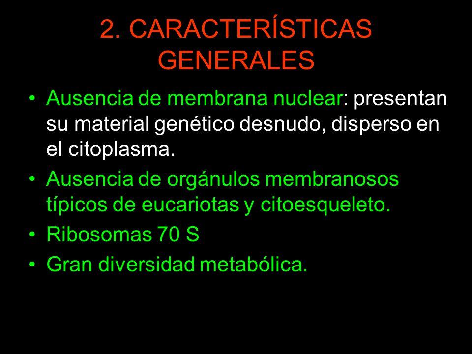 2. CARACTERÍSTICAS GENERALES