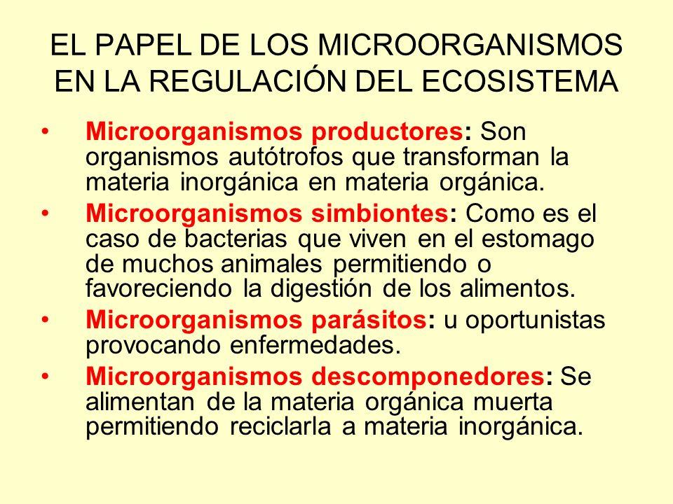 EL PAPEL DE LOS MICROORGANISMOS EN LA REGULACIÓN DEL ECOSISTEMA
