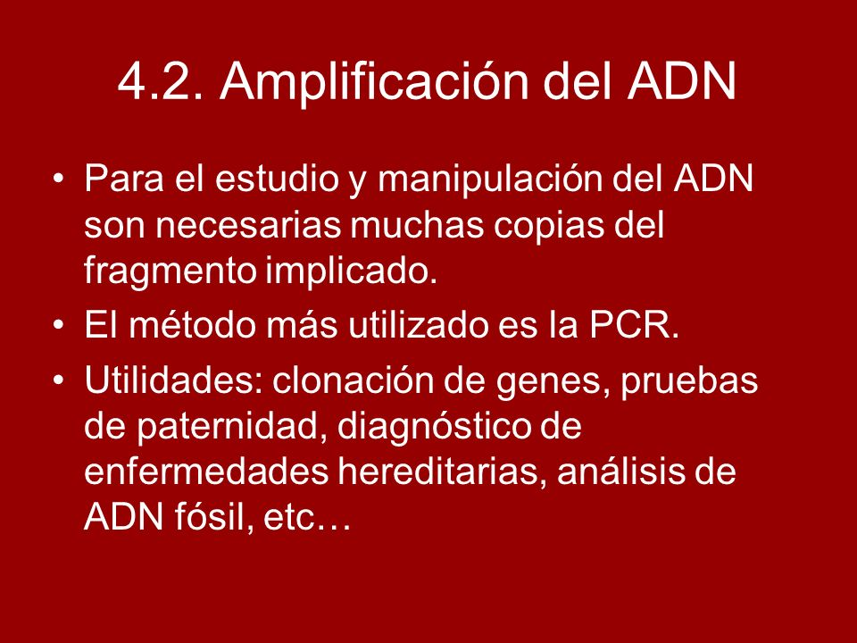 4.2. Amplificación del ADNPara el estudio y manipulación del ADN son necesarias muchas copias del fragmento implicado.