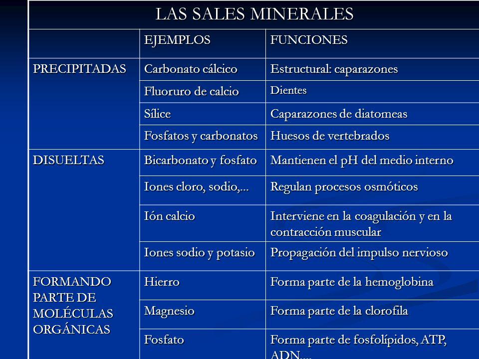 LAS SALES MINERALES EJEMPLOS FUNCIONES PRECIPITADAS Carbonato cálcico