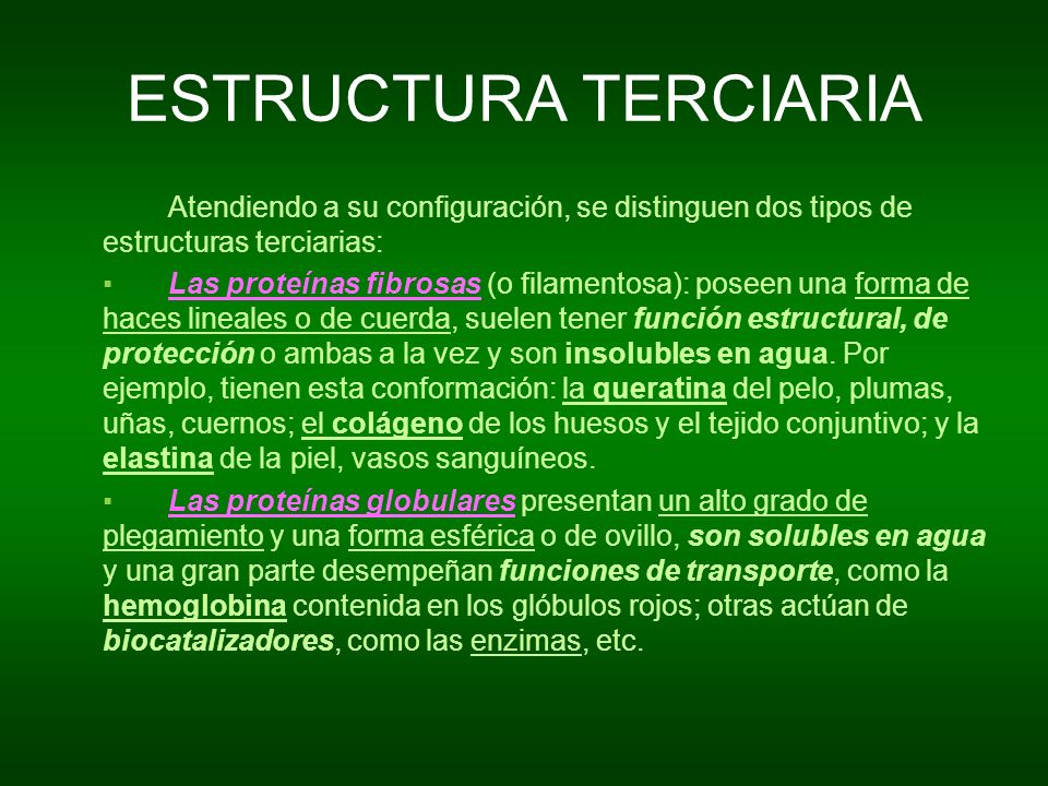 ESTRUCTURA TERCIARIAAtendiendo a su configuración, se distinguen dos tipos de estructuras terciarias: