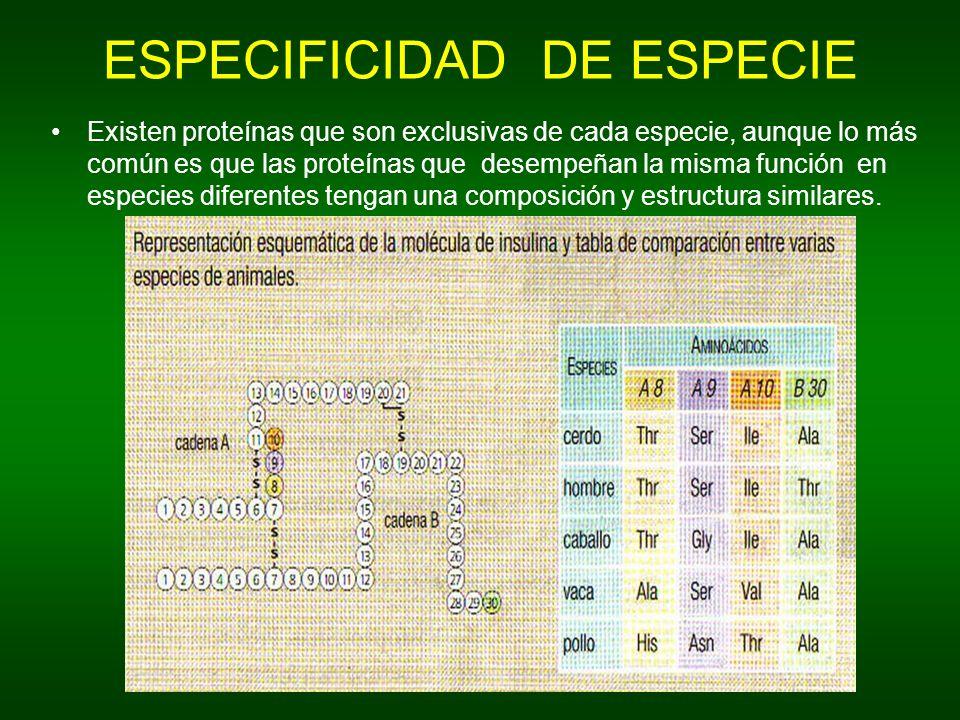 ESPECIFICIDAD DE ESPECIE