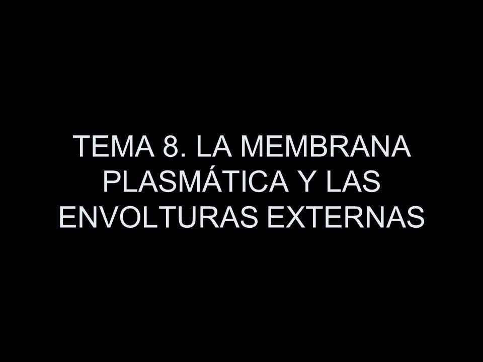 TEMA 8. LA MEMBRANA PLASMÁTICA Y LAS ENVOLTURAS EXTERNAS