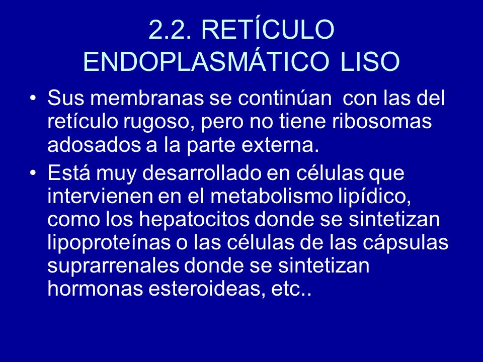 2.2. RETÍCULO ENDOPLASMÁTICO LISO
