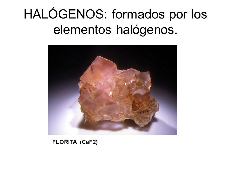 HALÓGENOS: formados por los elementos halógenos.