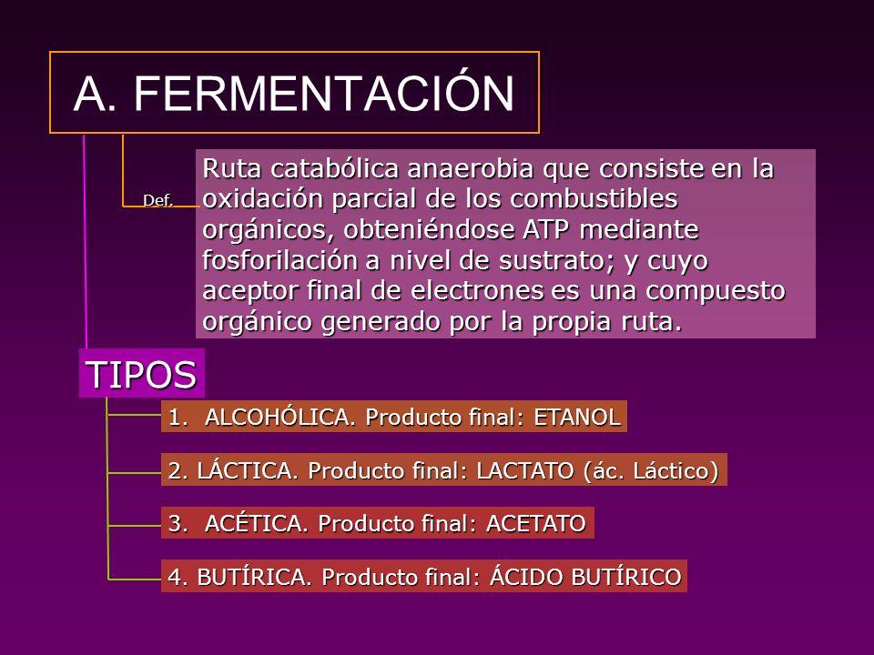 A. FERMENTACIÓN