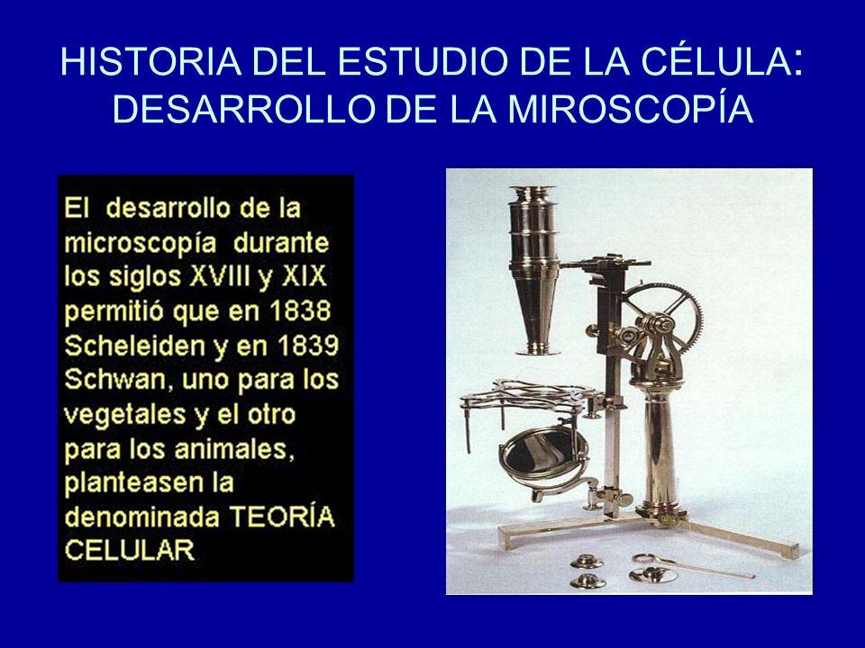 HISTORIA DEL ESTUDIO DE LA CÉLULA: DESARROLLO DE LA MIROSCOPÍA