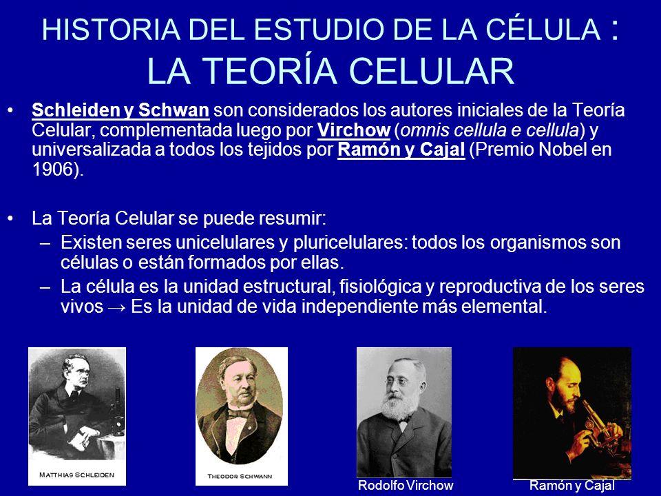 HISTORIA DEL ESTUDIO DE LA CÉLULA : LA TEORÍA CELULAR