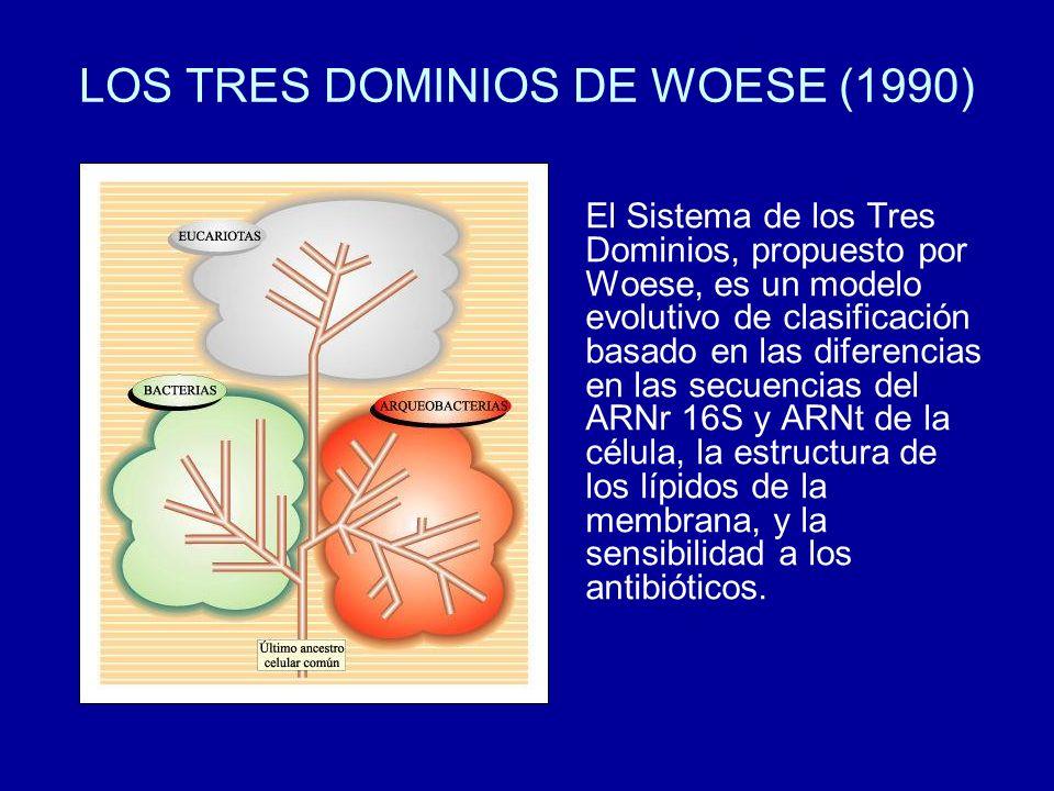 LOS TRES DOMINIOS DE WOESE (1990)