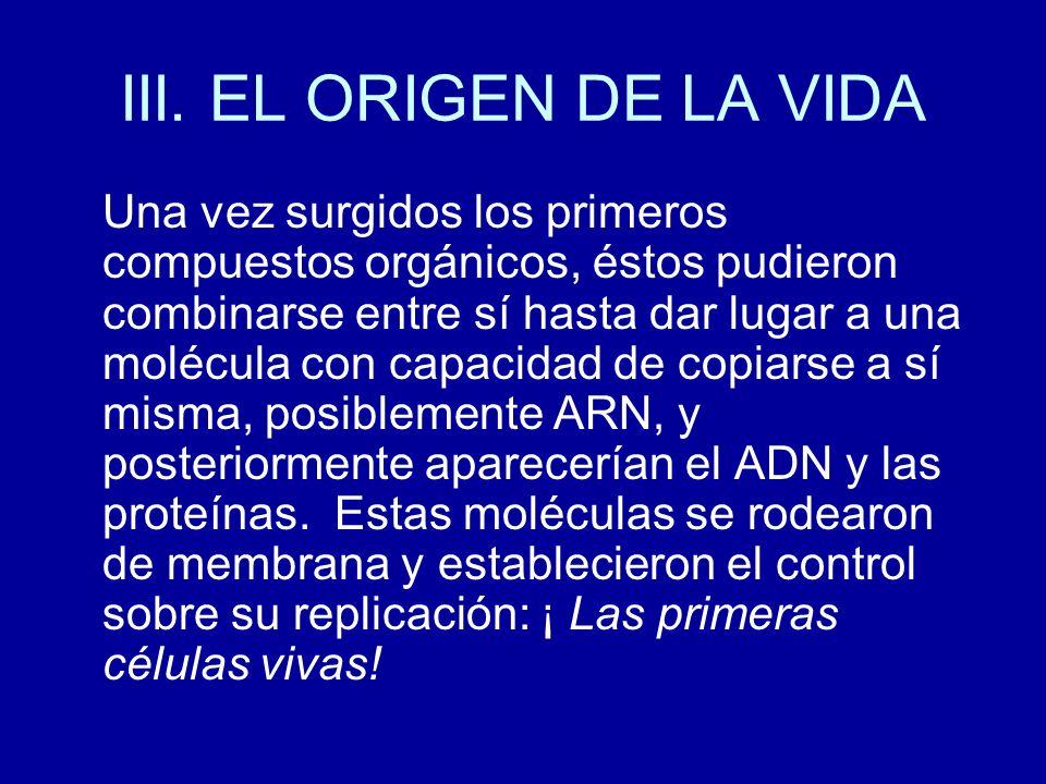 III. EL ORIGEN DE LA VIDA