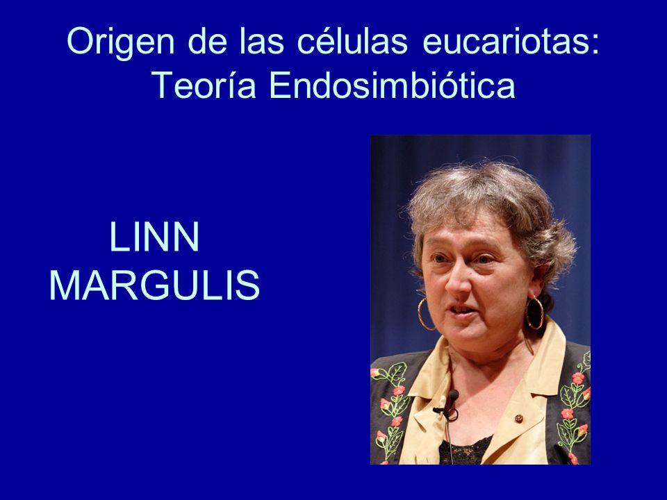 Origen de las células eucariotas: Teoría Endosimbiótica