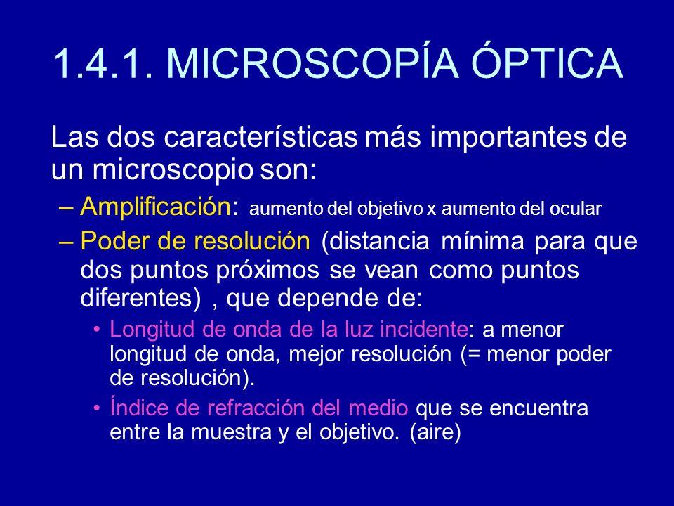 1.4.1. MICROSCOPÍA ÓPTICA Las dos características más importantes de un microscopio son: Amplificación: aumento del objetivo x aumento del ocular.