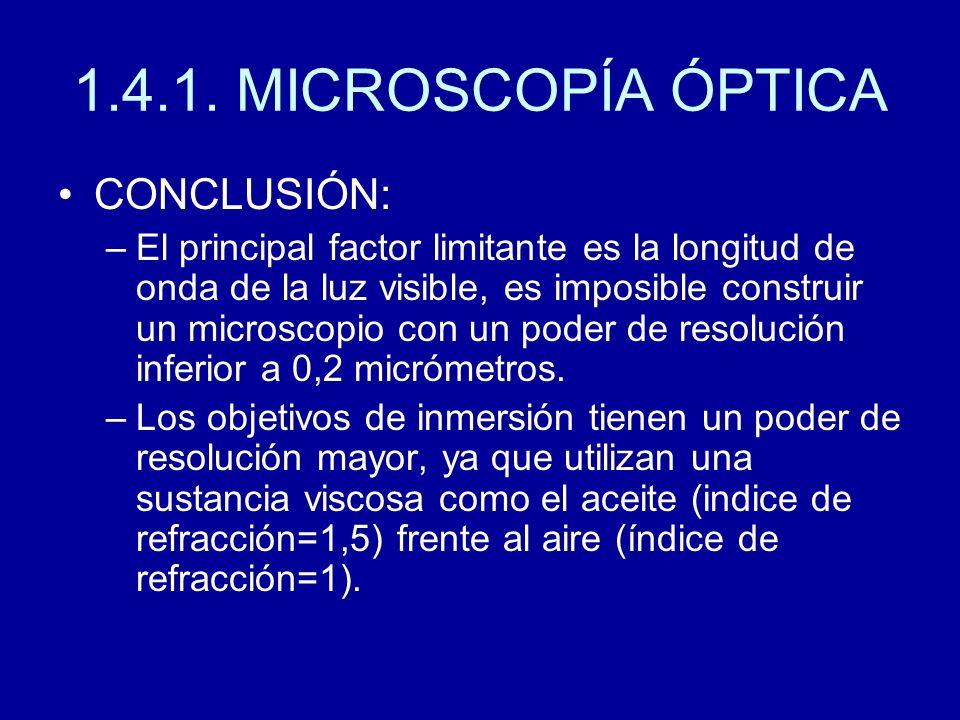 1.4.1. MICROSCOPÍA ÓPTICA CONCLUSIÓN: