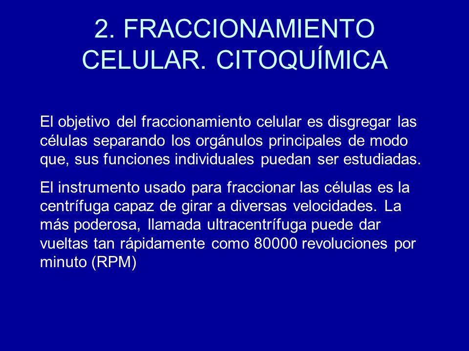 2. FRACCIONAMIENTO CELULAR. CITOQUÍMICA
