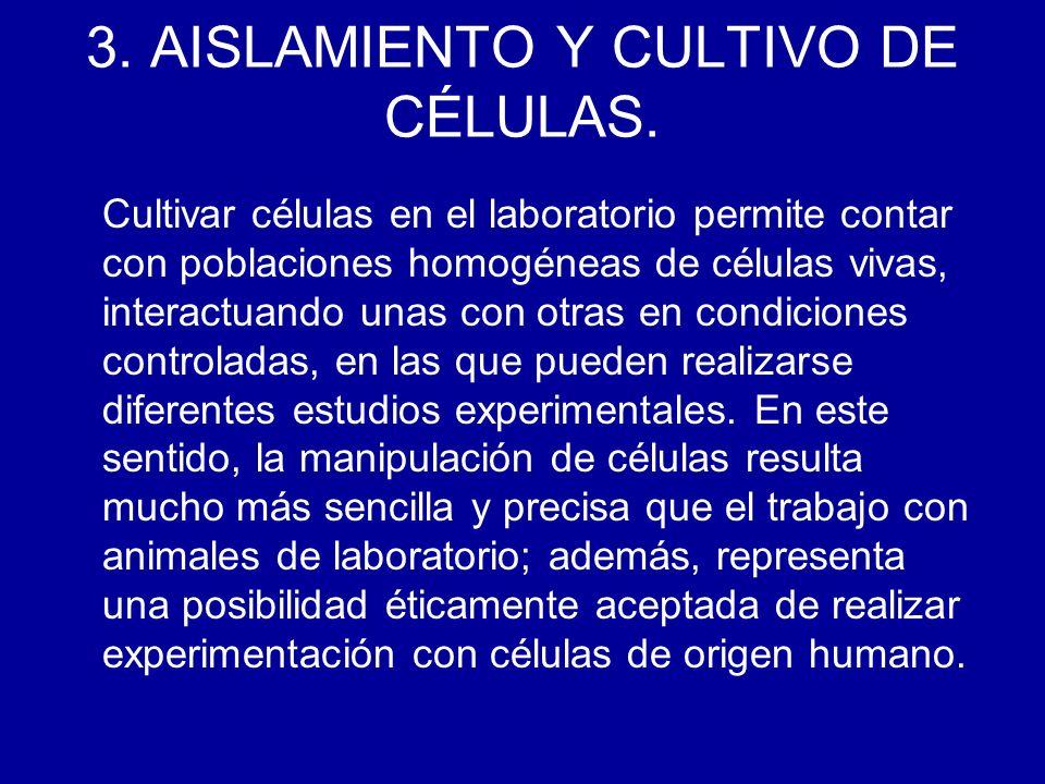 3. AISLAMIENTO Y CULTIVO DE CÉLULAS.