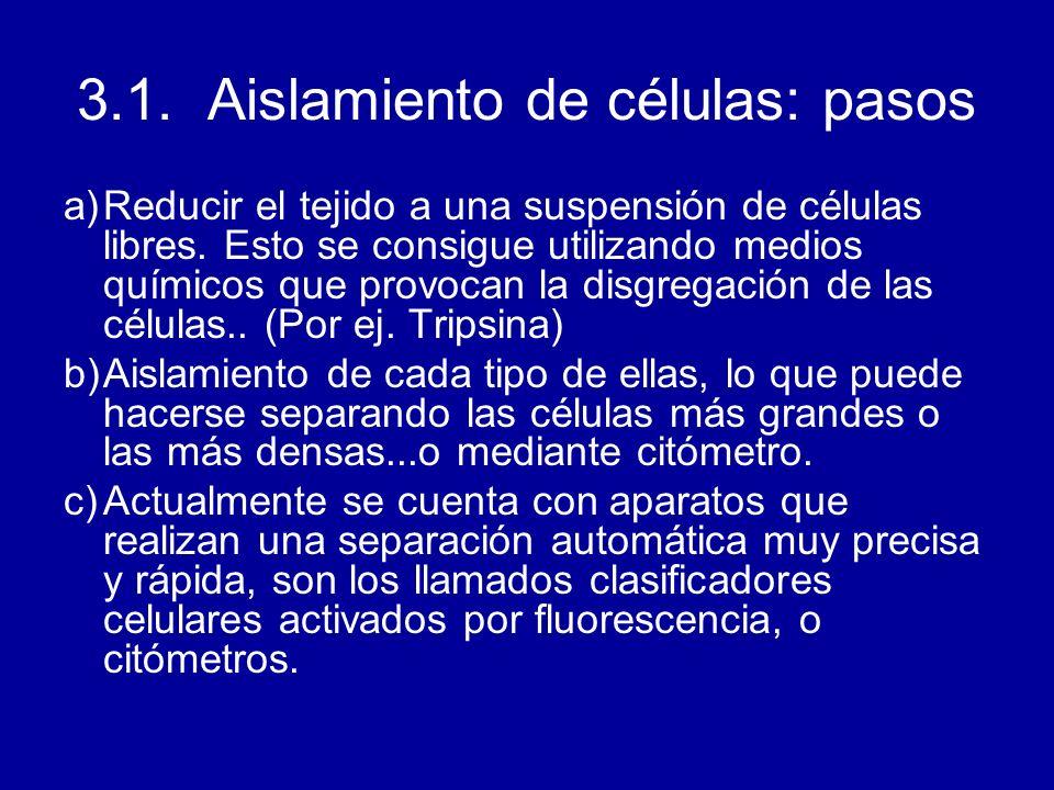 3.1. Aislamiento de células: pasos