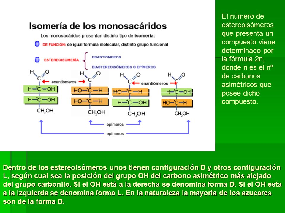 El número de estereoisómeros que presenta un compuesto viene determinado por la fórmula 2n, donde n es el nº de carbonos asimétricos que posee dicho compuesto.