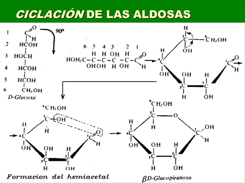 CICLACIÓN DE LAS ALDOSAS