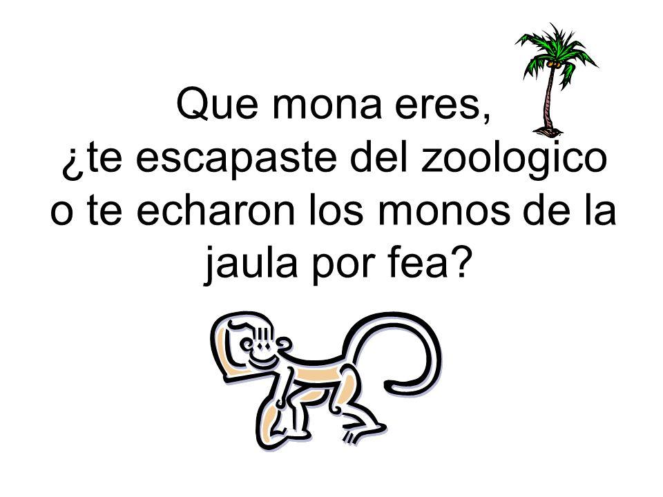 ¿te escapaste del zoologico o te echaron los monos de la