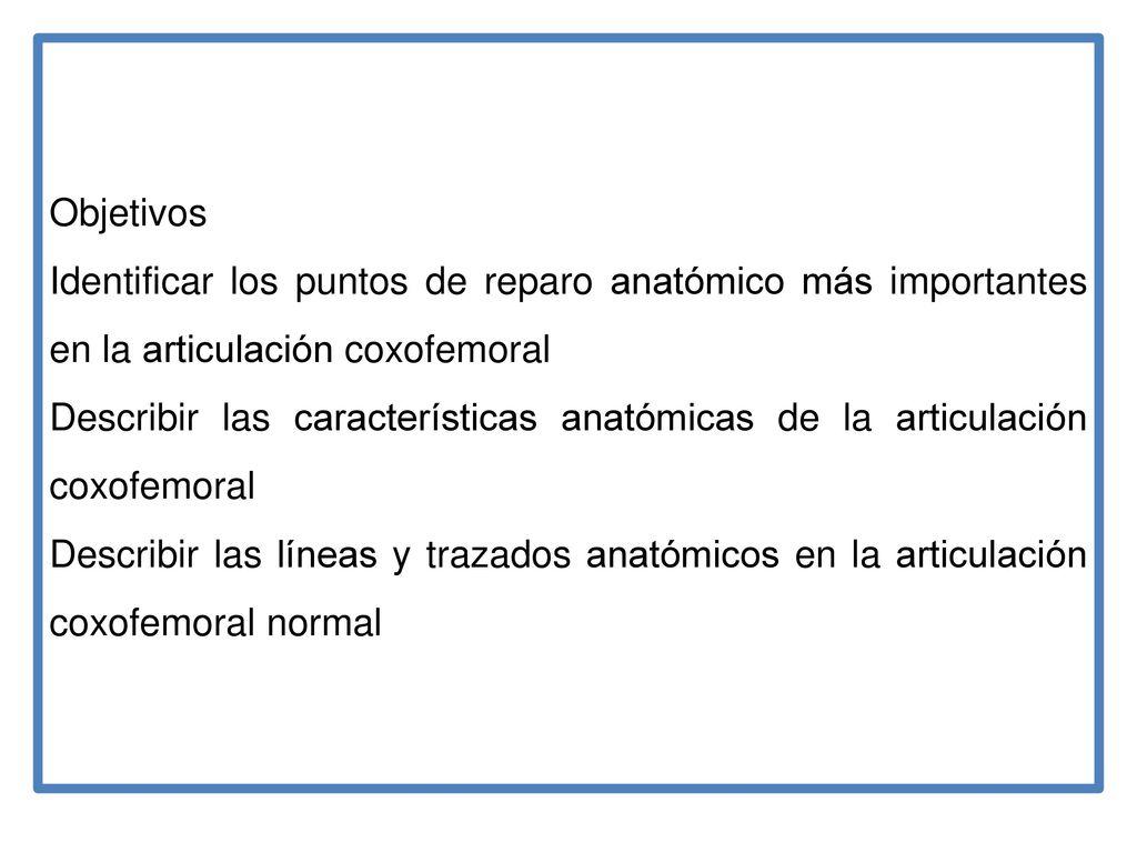 Increíble La Anatomía Del Canto Friso - Anatomía de Las Imágenesdel ...