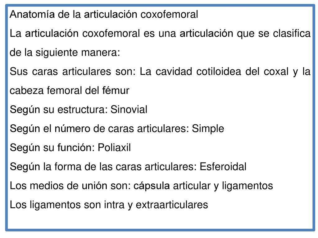 Vistoso Programas Graduados Anatomía Composición - Anatomía de Las ...