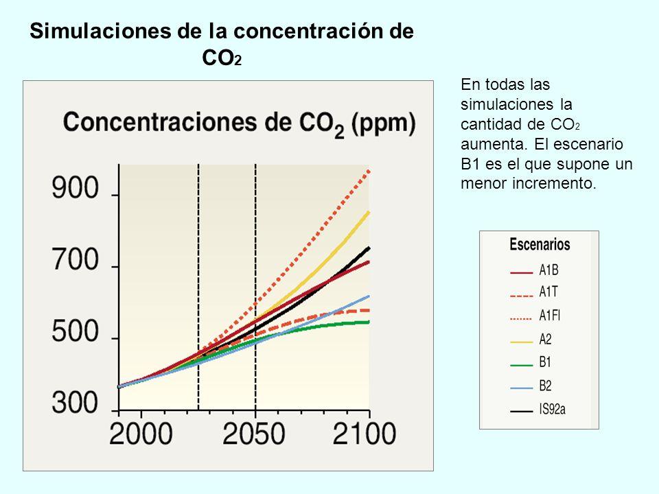 Simulaciones de la concentración de CO2