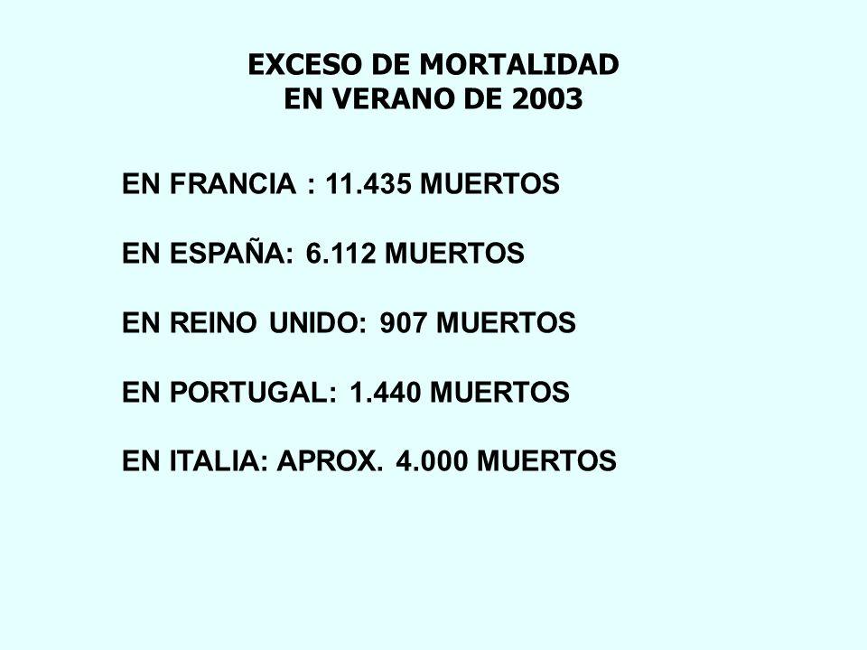 EXCESO DE MORTALIDAD EN VERANO DE 2003