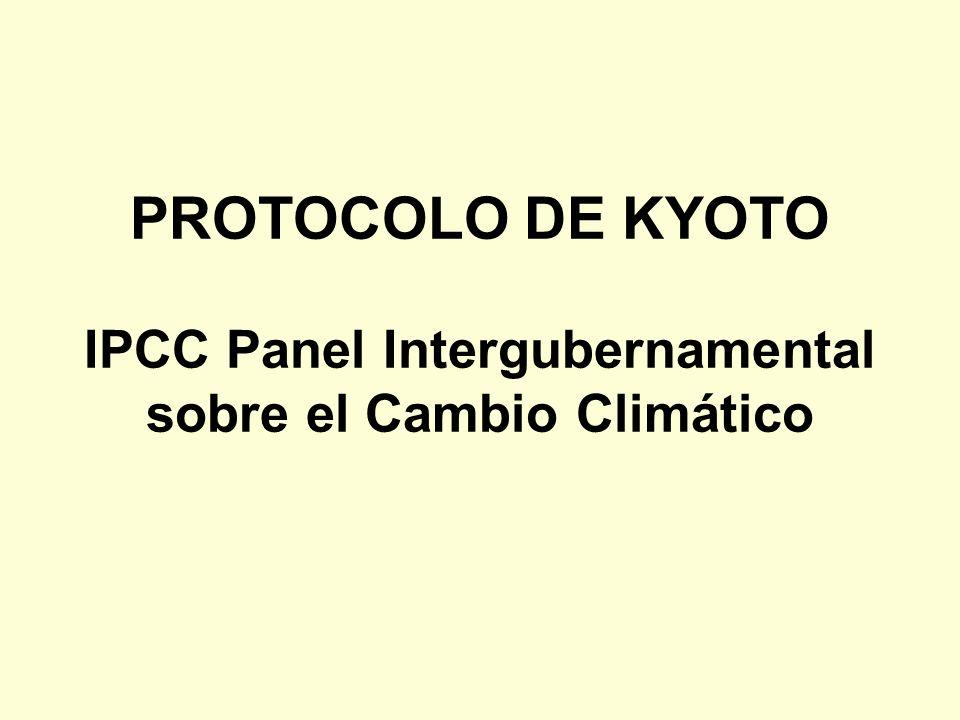 PROTOCOLO DE KYOTO IPCC Panel Intergubernamental sobre el Cambio Climático