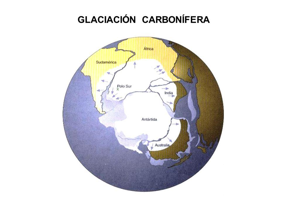 GLACIACIÓN CARBONÍFERA