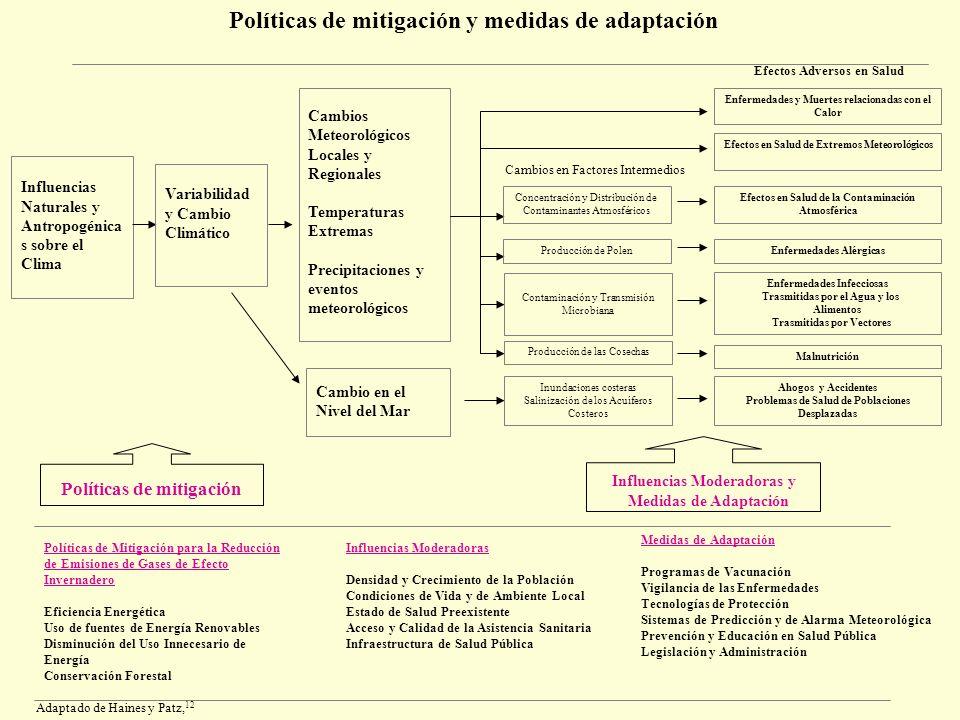 Políticas de mitigación y medidas de adaptación