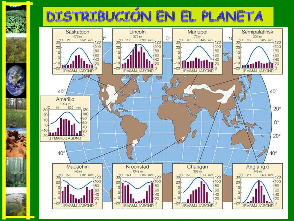 DISTRIBUCIÓN EN EL PLANETA