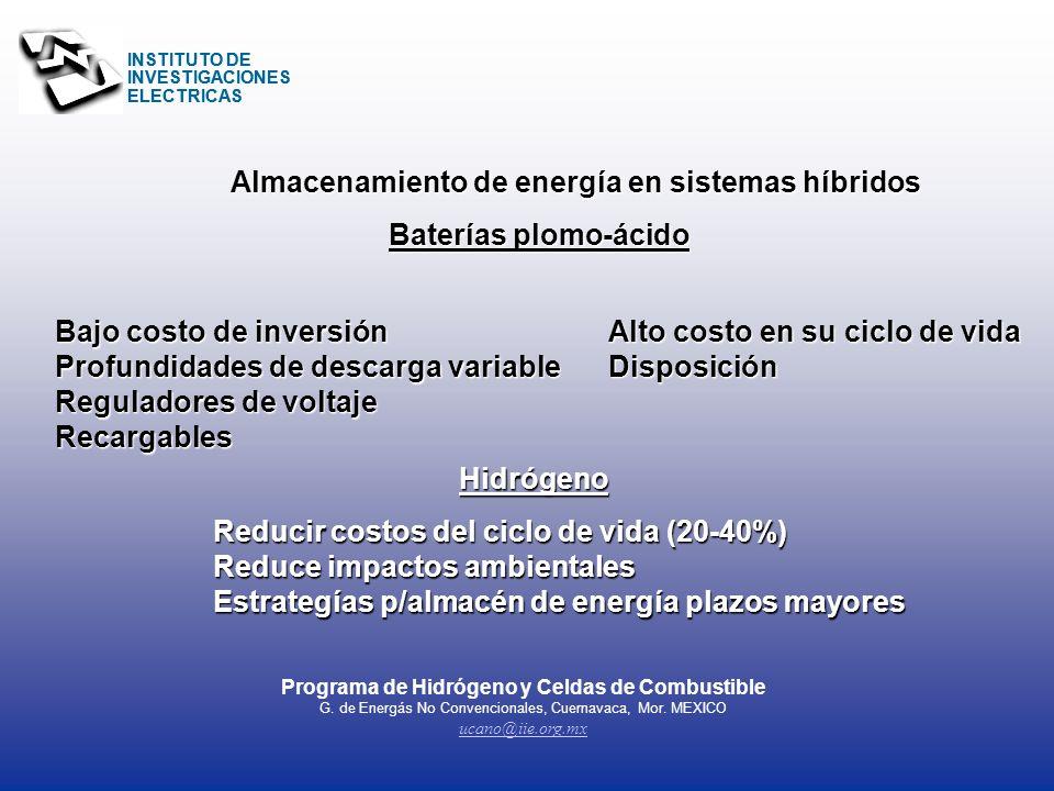 Programa de Hidrógeno y Celdas de Combustible