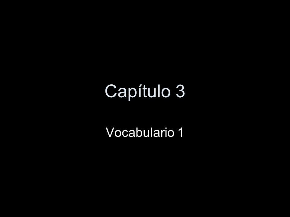 Capítulo 3 Vocabulario 1