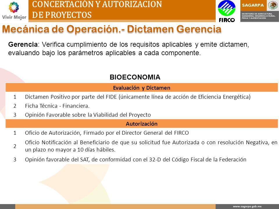 Mecánica de Operación.- Dictamen Gerencia
