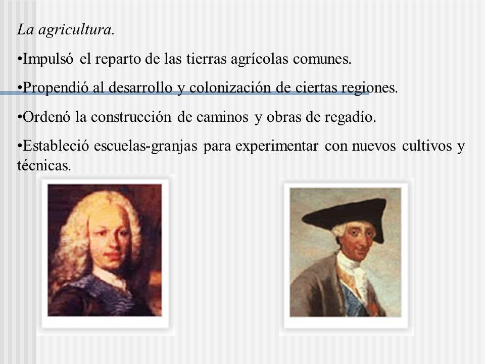 La agricultura. Impulsó el reparto de las tierras agrícolas comunes. Propendió al desarrollo y colonización de ciertas regiones.