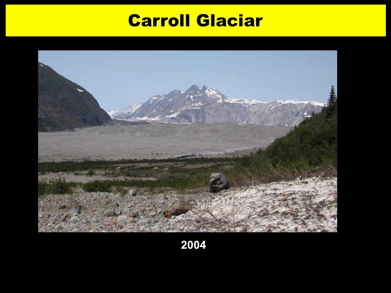Carroll Glaciar 2004 26 2626