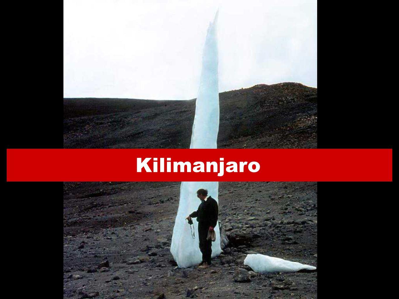 Kilimanjaro 29 2929