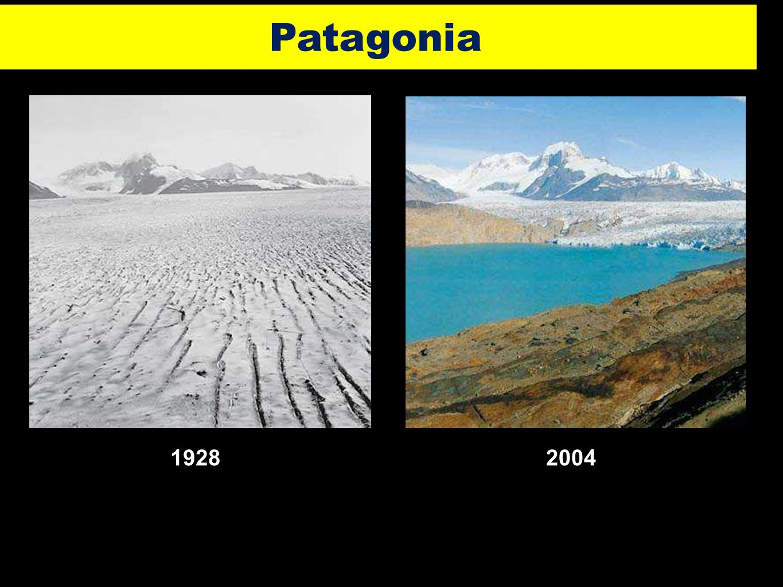 Patagonia 1928 2004 31 3131