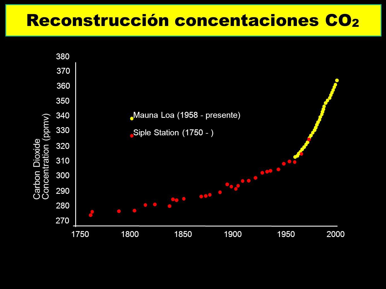 Reconstrucción concentaciones CO2
