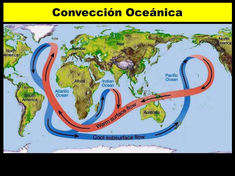Convección Oceánica 77