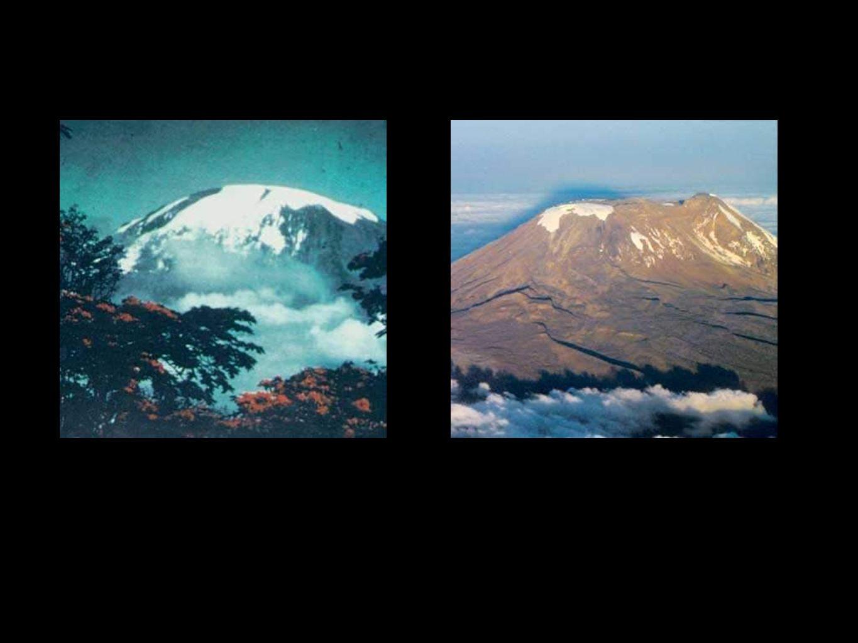Kilimanjaro 1970 2005 89 8989