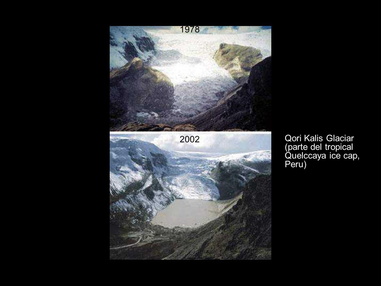 1978 Qori Kalis Glaciar 2002 (parte del tropical Quelccaya ice cap,