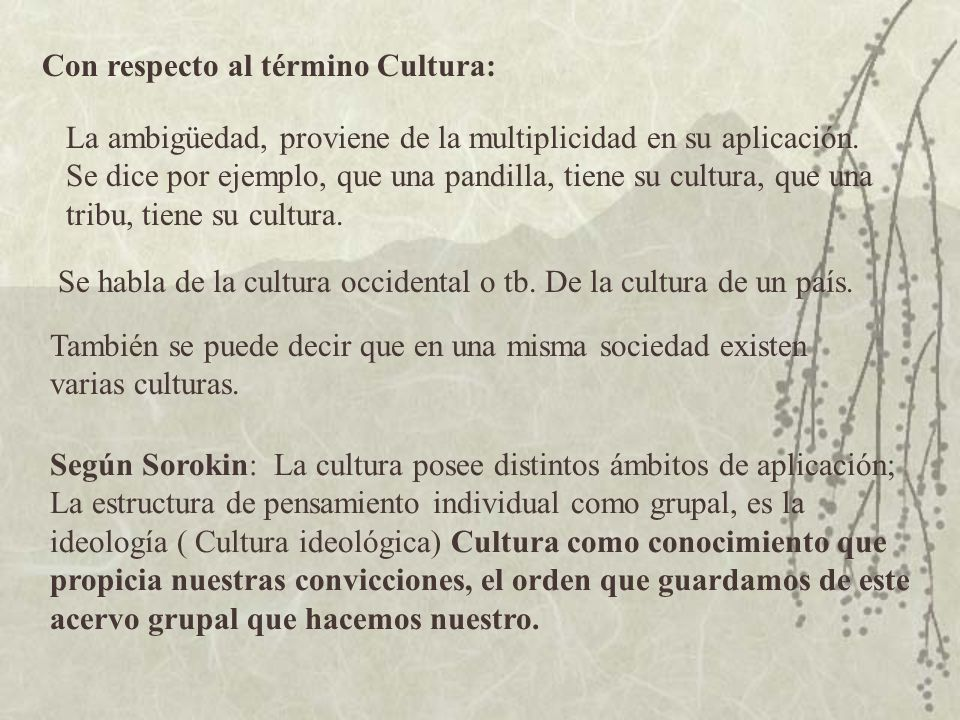 Con respecto al término Cultura: