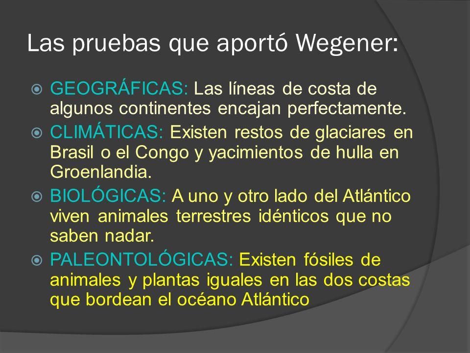 Las pruebas que aportó Wegener: