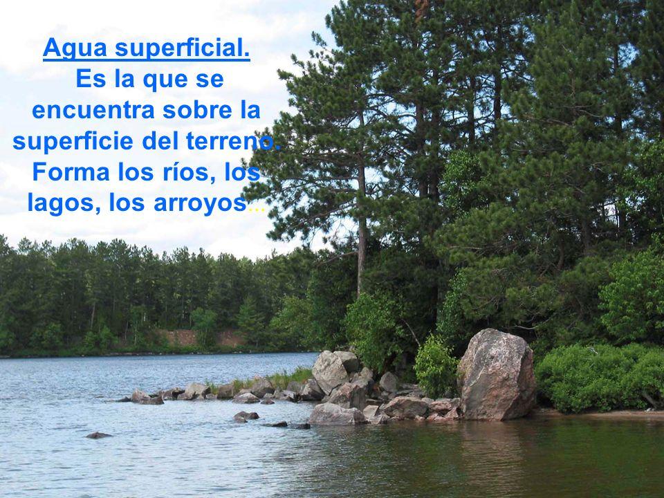 Agua superficial.Es la que se encuentra sobre la superficie del terreno.