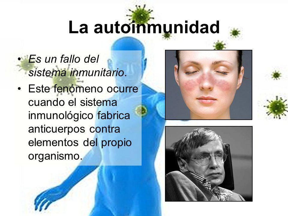 La autoinmunidad Es un fallo del sistema inmunitario.