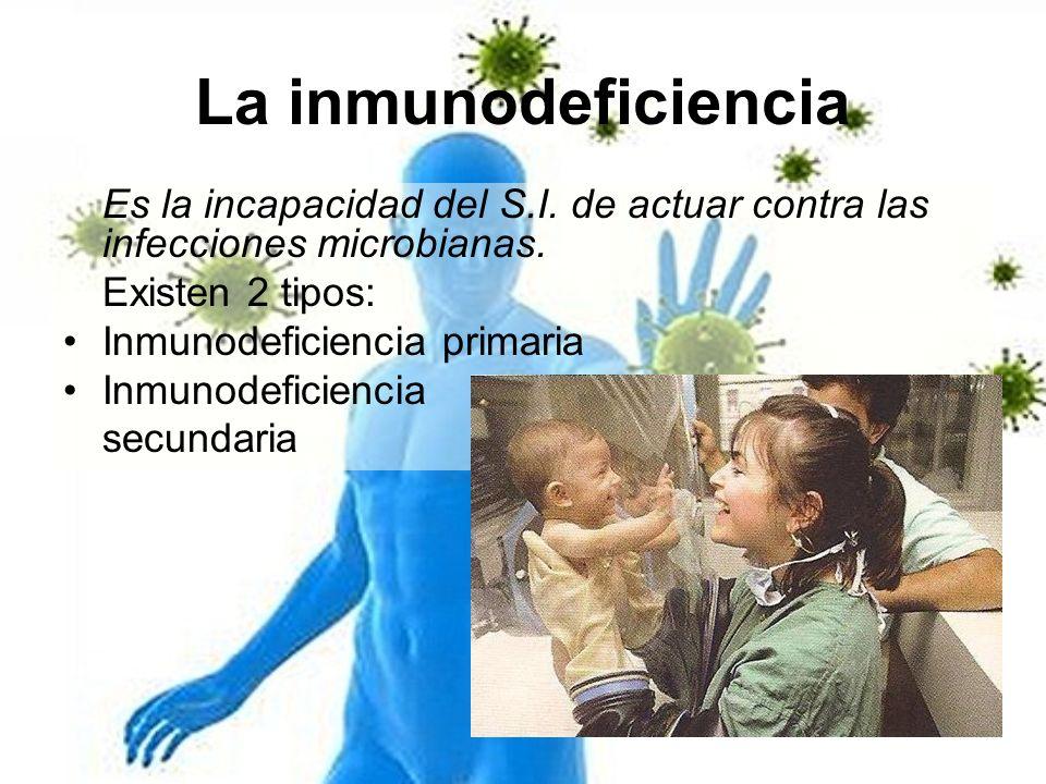 La inmunodeficiencia Es la incapacidad del S.I. de actuar contra las infecciones microbianas. Existen 2 tipos: