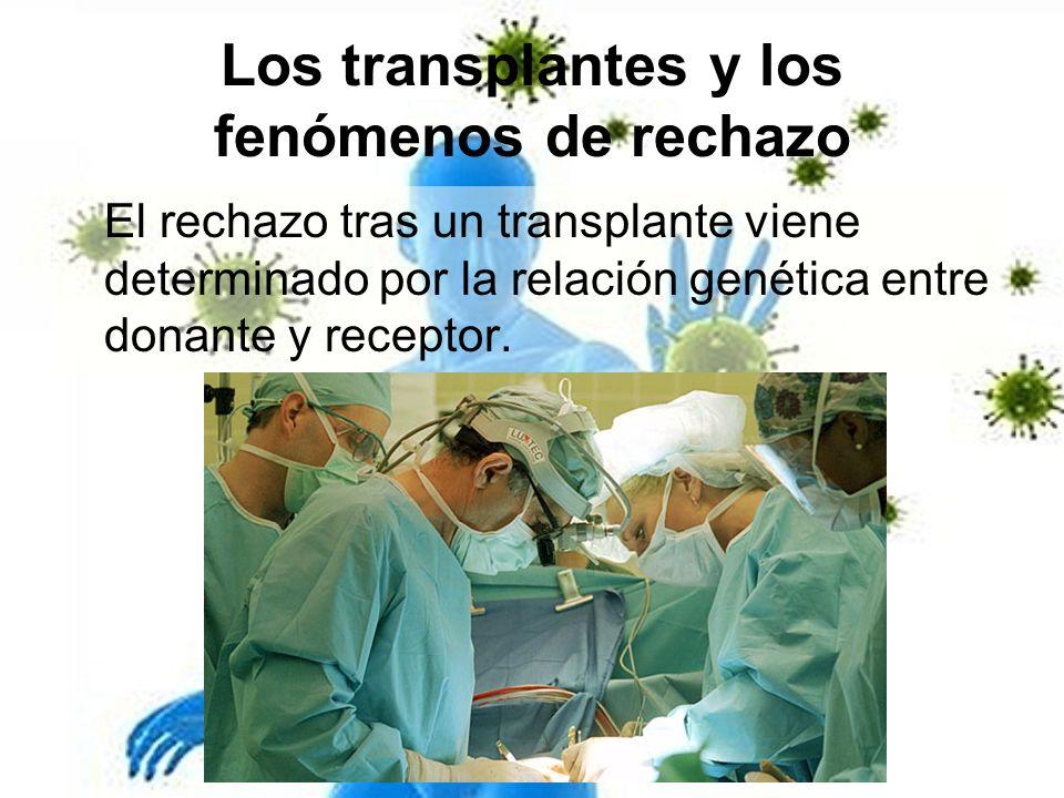 Los transplantes y los fenómenos de rechazo