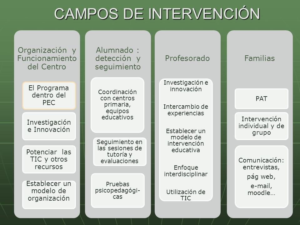 CAMPOS DE INTERVENCIÓN